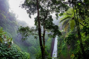 waterfall-384663_640