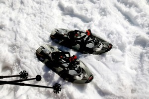 snow-shoes-417933_640