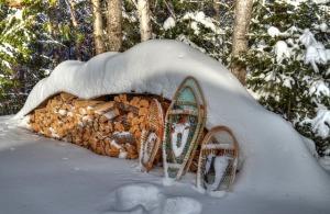 winter-754796_640 (2)