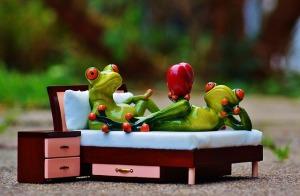 frog-1073356_640 (2)