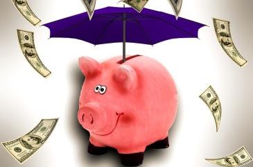 budget; save money